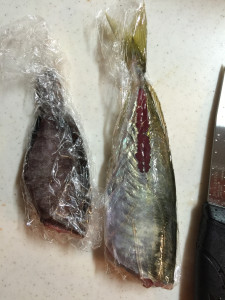 160211_fishingprecook